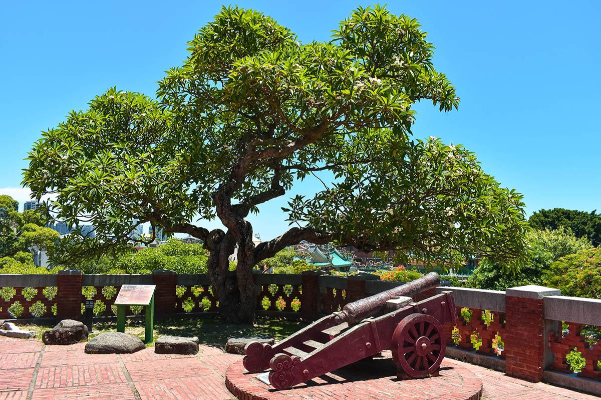 Cannon Fort Zeelandia